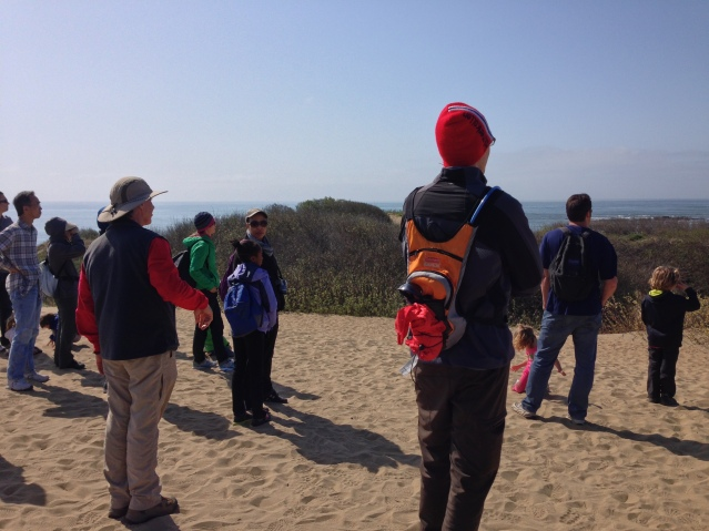 Ranger Guided Tour Ano Nuevo State Park